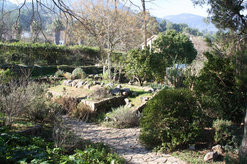 Jard n bot nico de s ller turismo bot nico for Jardin botanico soller