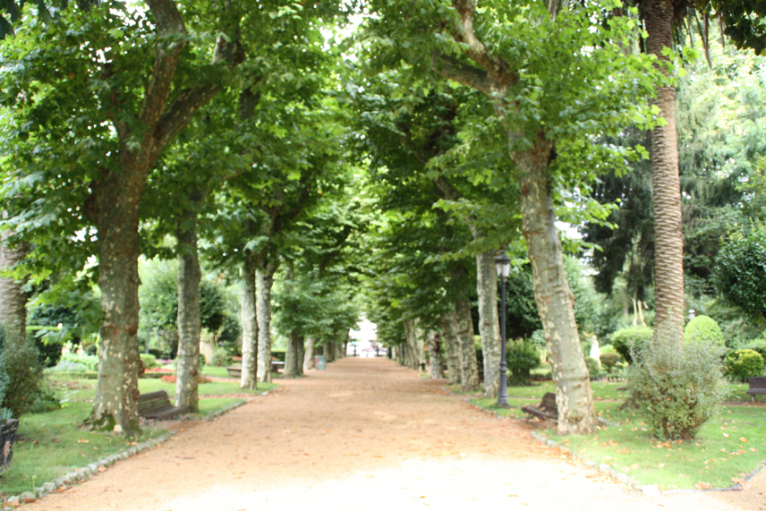 Jard n bot nico art stico de padr n turismo bot nico for Jardin botanico albacete