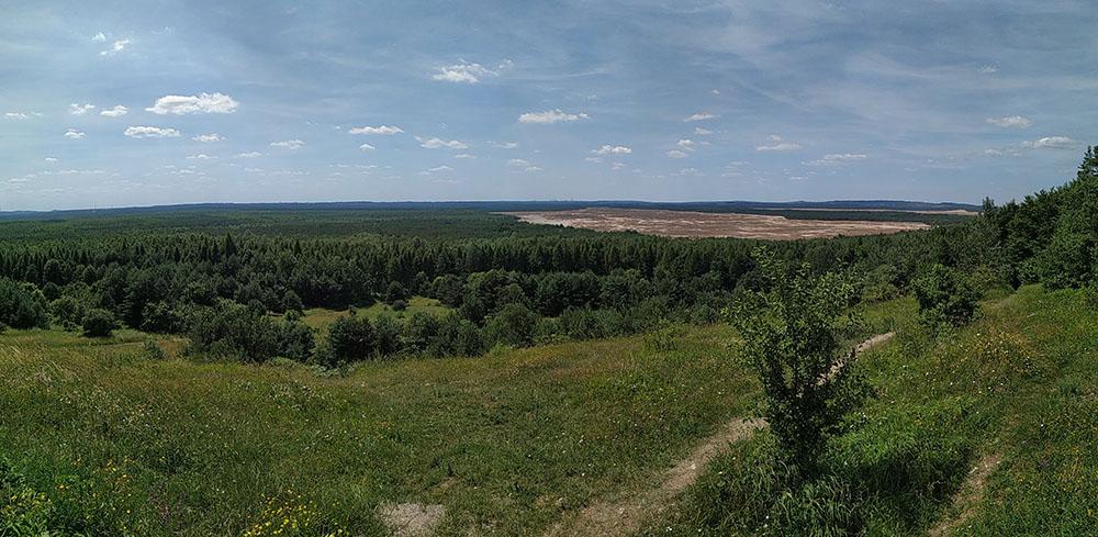 Aspecto panorámico del Desierto de Bledow y sus bosques circundantes.