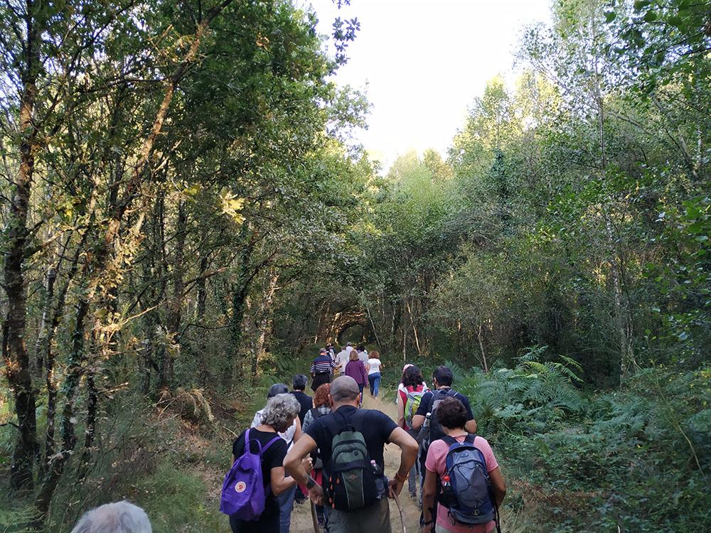 El grupo adentrándose en el bosque que custodia al río Ladra.