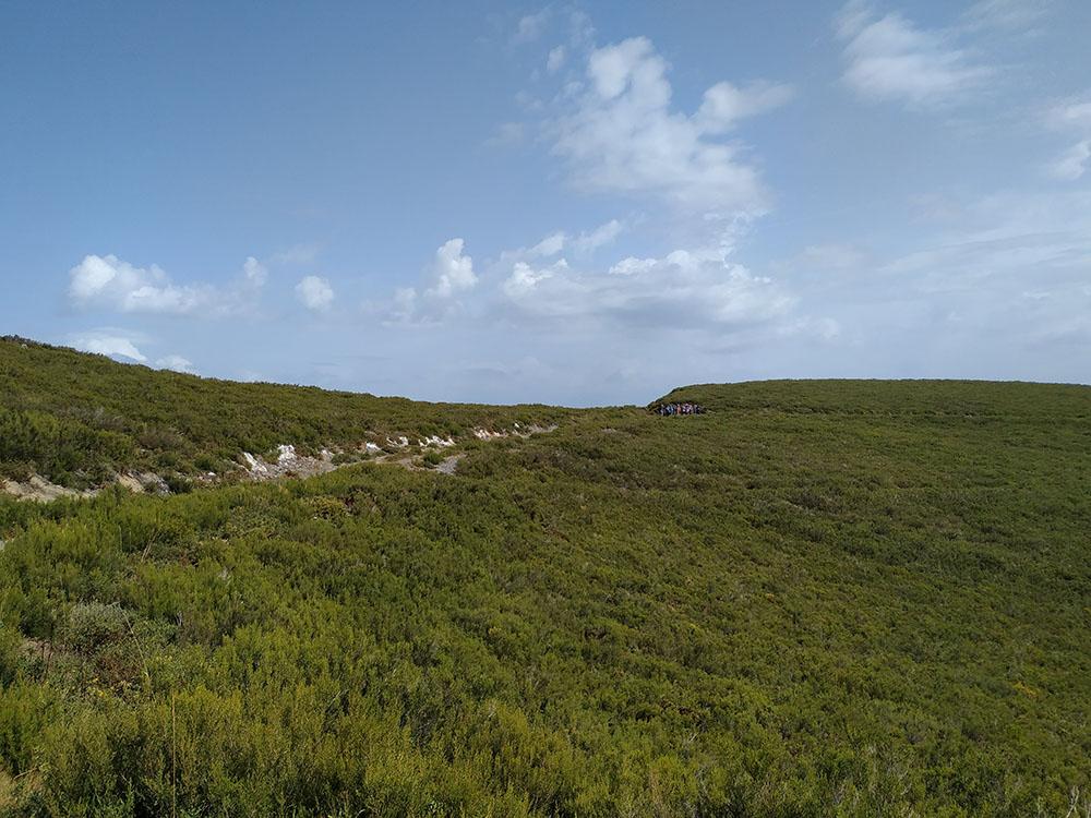 La parte de arriba de Rogueira (Sierra del Caurel) nos muestra un paisaje de brezos que nos trasladará a las Highlands escocesas.