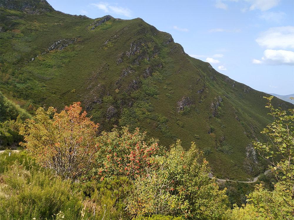 Las laderas de las montañas del Caurel nos dieron la bienvenida.
