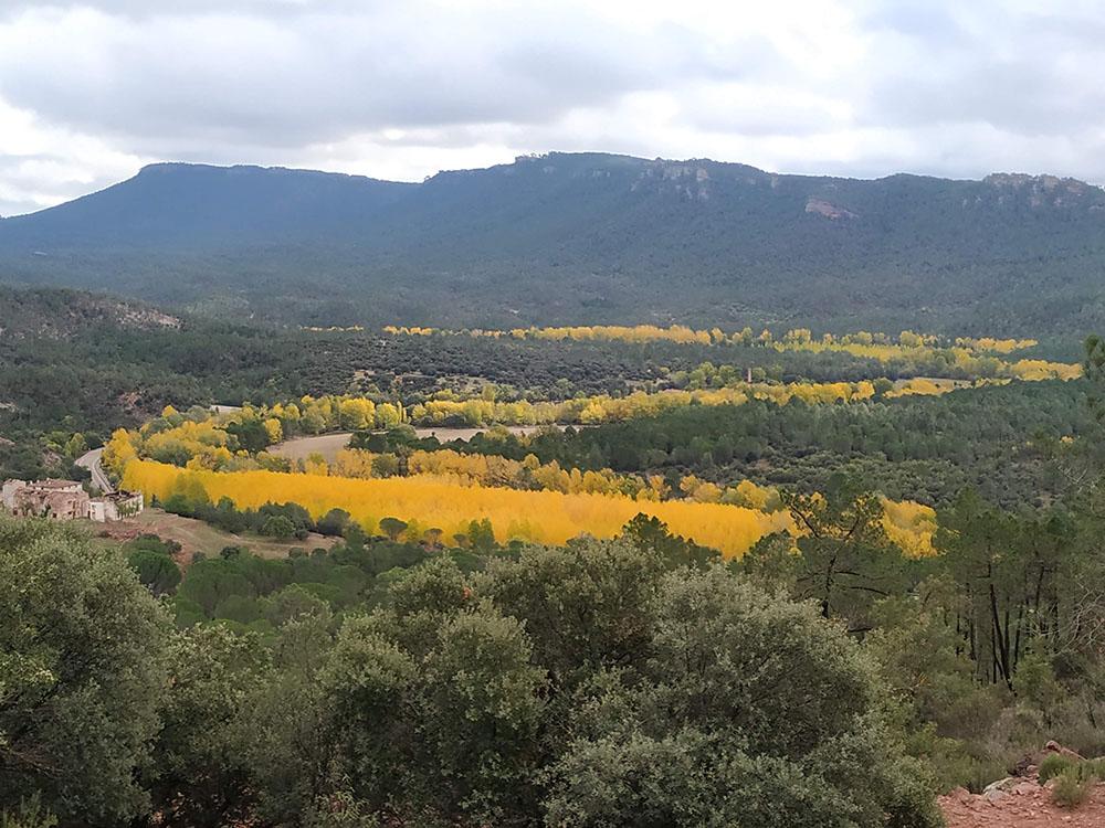 Así pintaba (nunca mejor dicho) el otoño en la Serranía Baja de Cuenca. Espectacular ¿no?