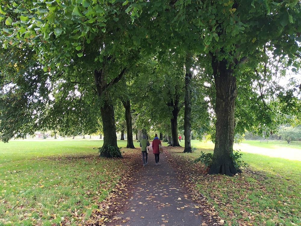 Y aunque haya mucha pradera en el EastVille Park, también hay paseos con arbolado.
