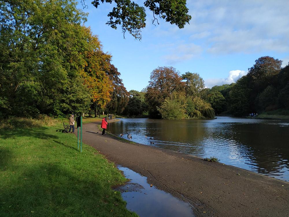 Aspecto a principios de otoño del lago del EastVille Park.