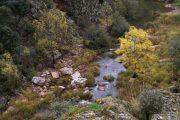 Río Estena