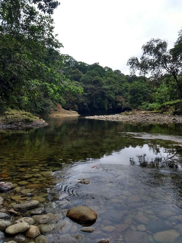 Aspecto del río San Cipriano. Un lugar ideal para dejarse llevar por la corriente.