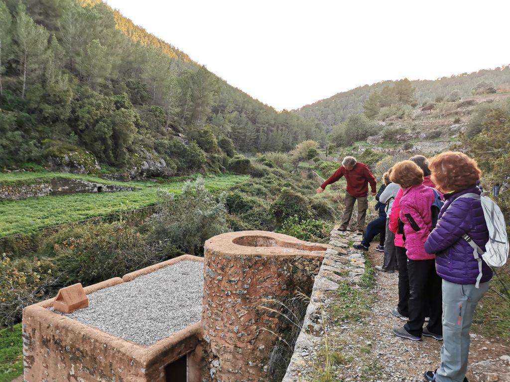 Este rincón de las huertas de Es Broll de Ibiza es más que recomendable