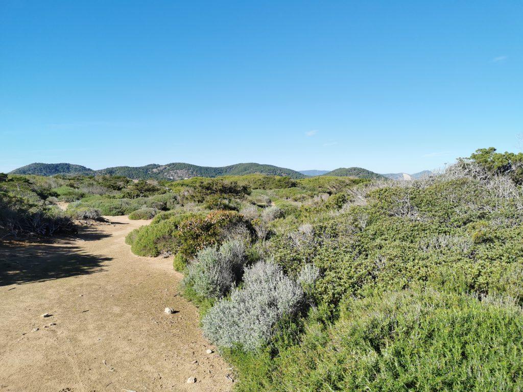 Los paisajes costeros y salineros de Ibiza pusieron la guinda final del viaje.