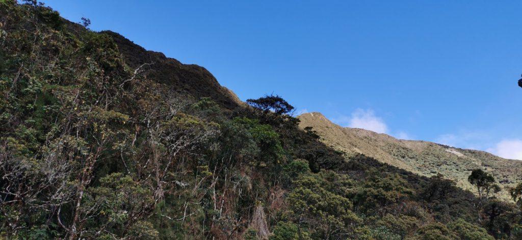 Las imponentes laderas del PN Podocarpus.