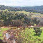 Río Guadalén