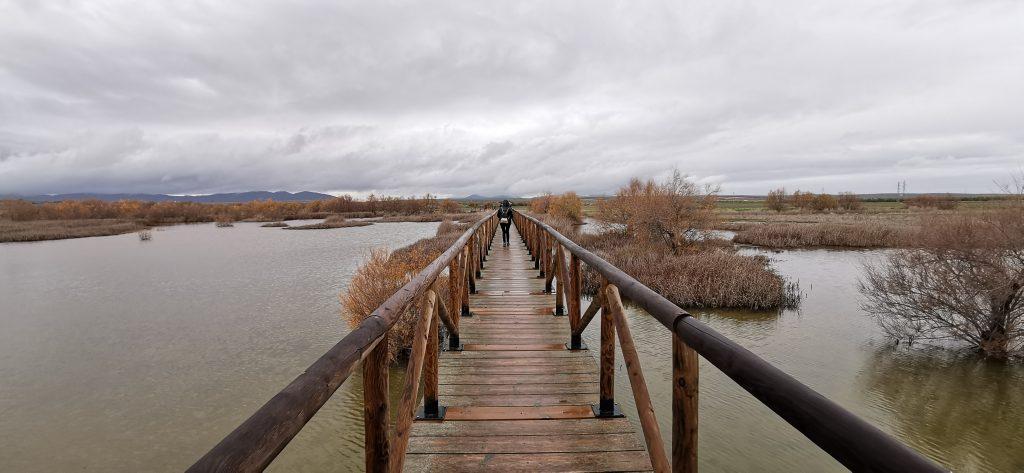 Paseo por la laguna de Fuente Piedra.