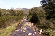 Arroyo de Valdelasmozas